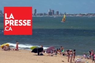 Inmobee - Inversiones Punta del Este